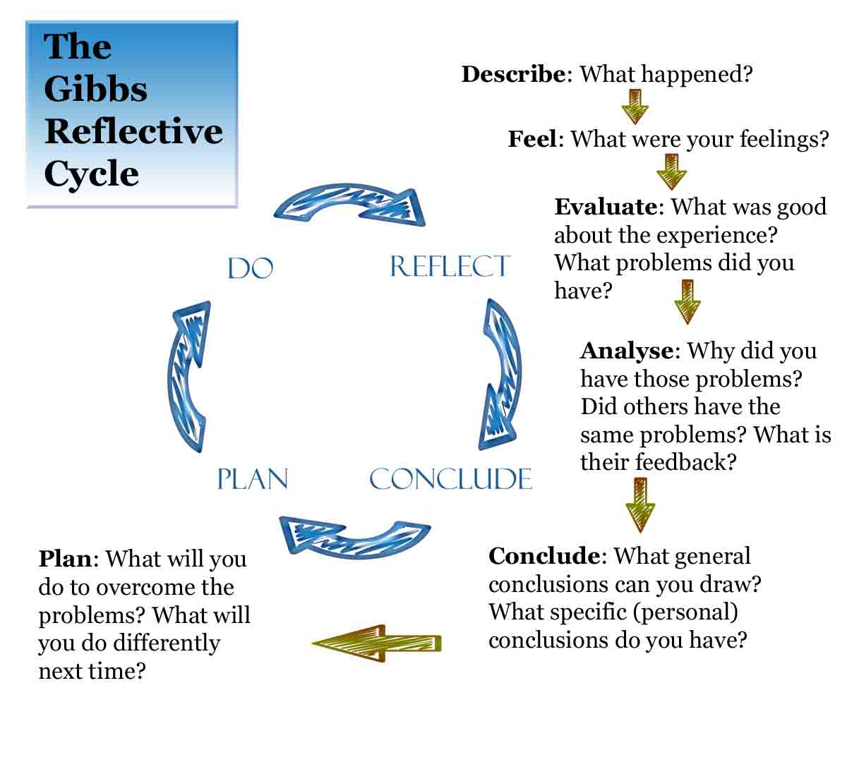 driscoll model of reflection essay